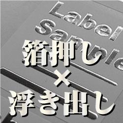 lab_main_case26